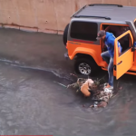 Must See Man In Jeep Rescues Dog From Canal